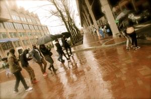 DC Rain